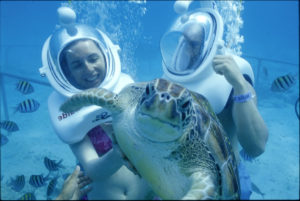 Snuba mit Schildkröten im Xcaret Park.