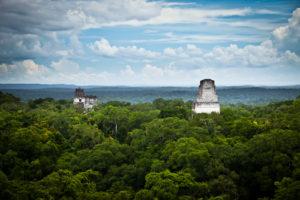Aufstieg der Maya Kultur in Tikal. Wunderschöner Blick über den Jungel von Tikal. Die Spitzen der Maya Pyramiden schauen aus dem Jungel heraus.
