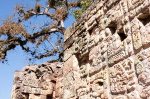 Maya Hieroglyphen an einer Maya Ruine.