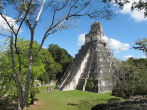 Ein großer Maya Temple in Tikal umgeben von Jungel.