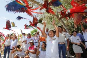 Papageien werden im Xcaret Park fliegen gelassen.